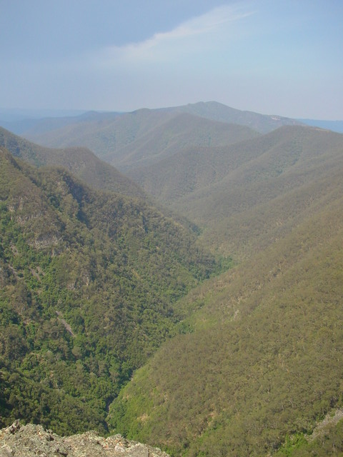 kanangra_view_of_valley_2002